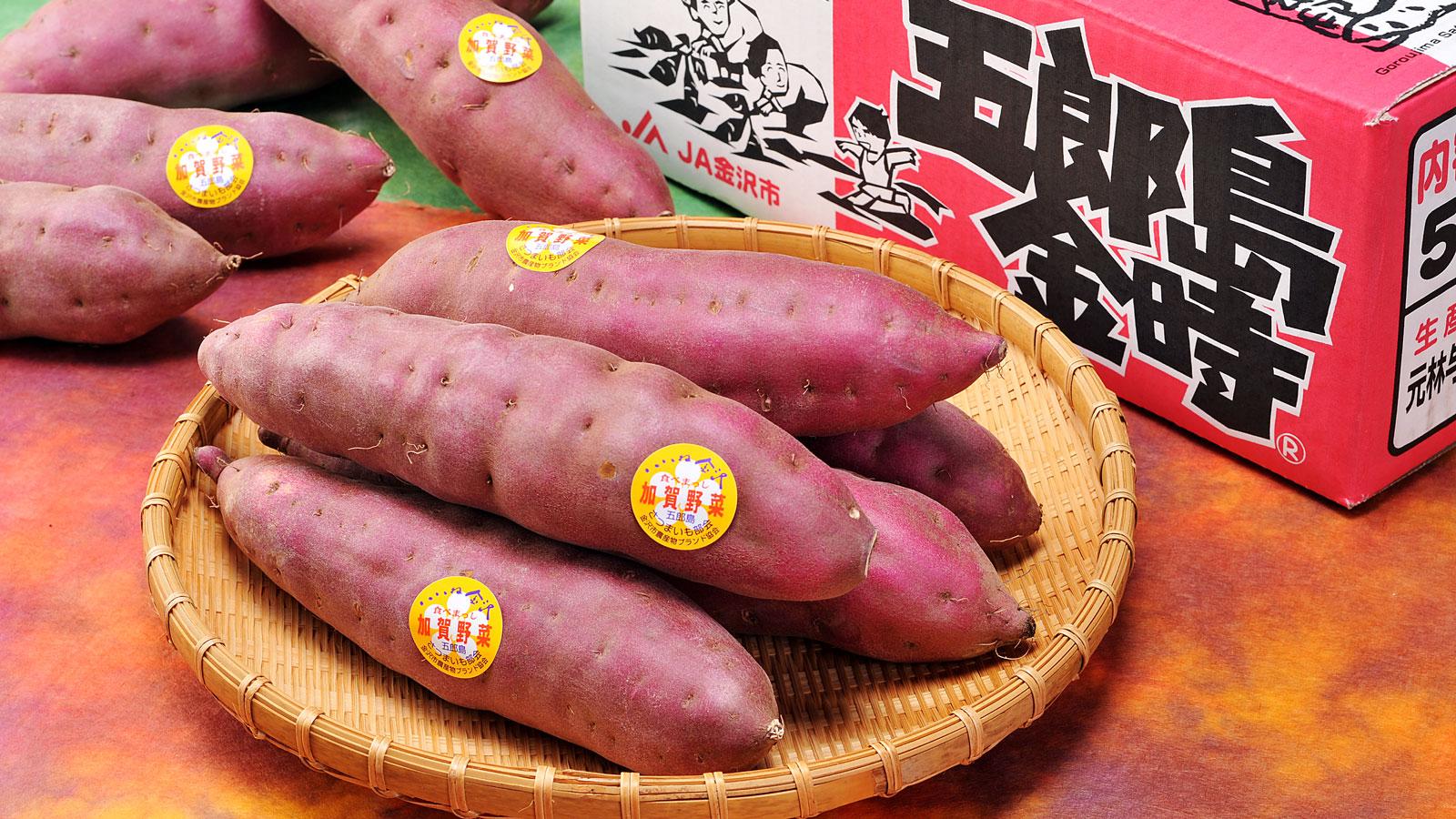 加賀野菜の五郎島金時